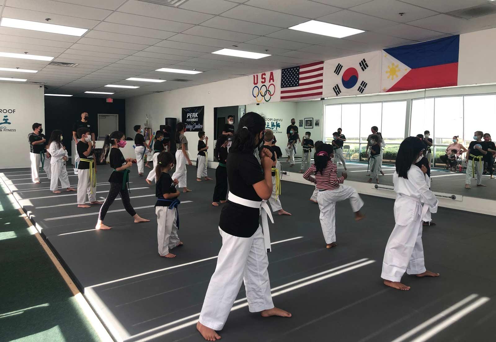 black-belt-adult-kicking